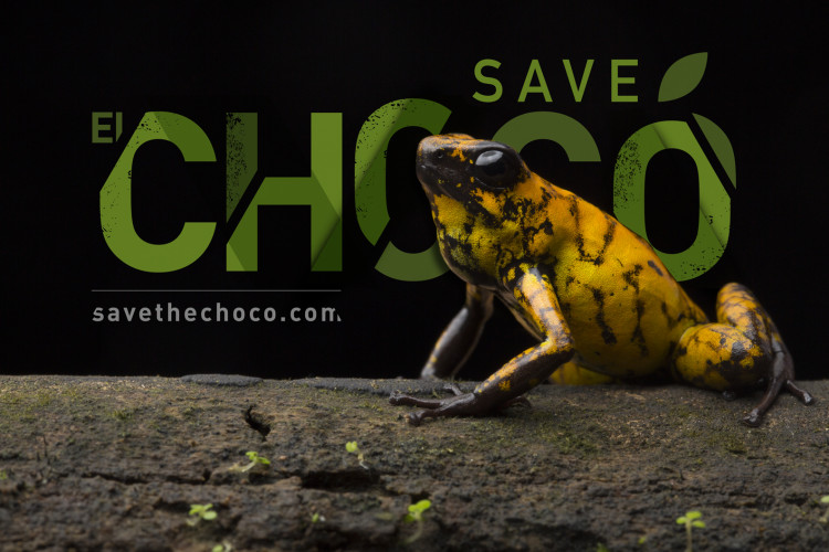 Save El Chocó