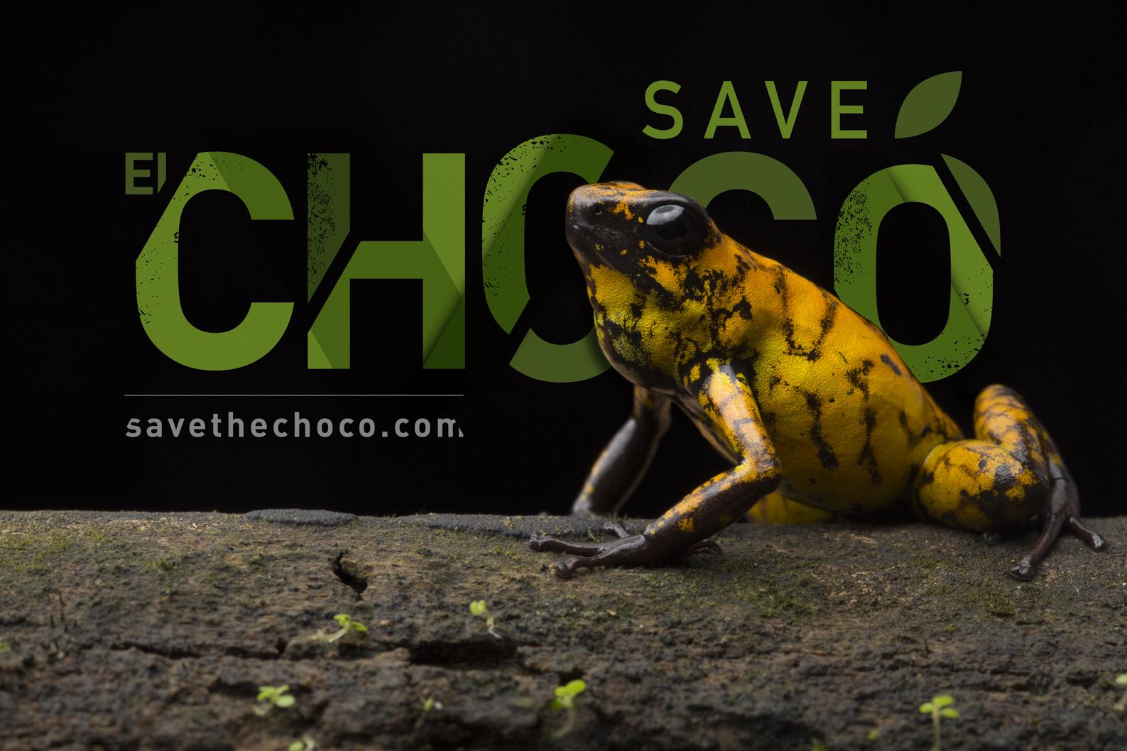 SAVETHECHOCO_FLICKR.COM